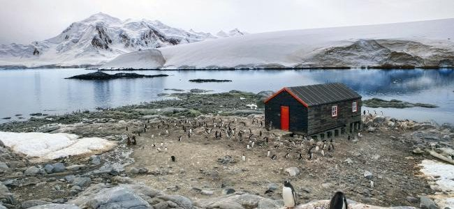 Things To Think About Before Traveling To Antarctica